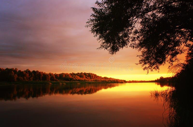 Sommar som bedövar solnedgång på floden arkivfoto