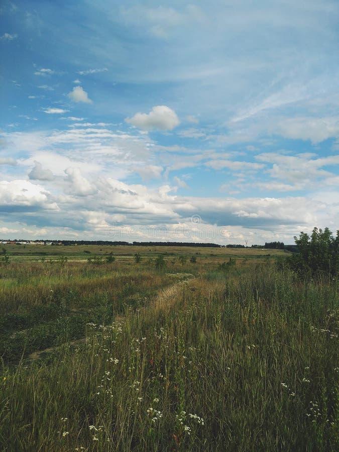 Sommar Tid för byKyiv region royaltyfria bilder