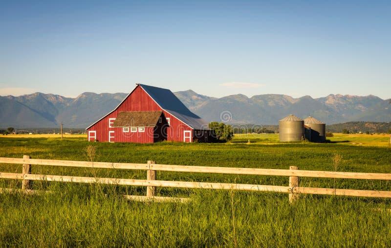 Sommarafton med en röd ladugård i lantliga Montana arkivbilder