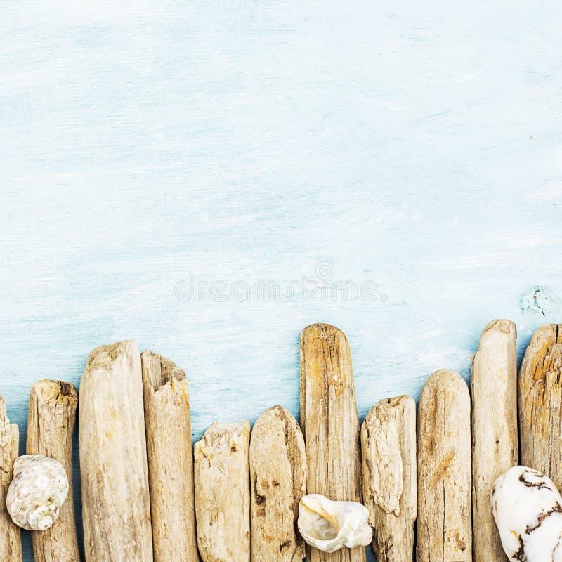 Sommarbakgrund, marin- objekt för drivved, havet anmärker på turkosblåttträ med kopieringsutrymme arkivbilder