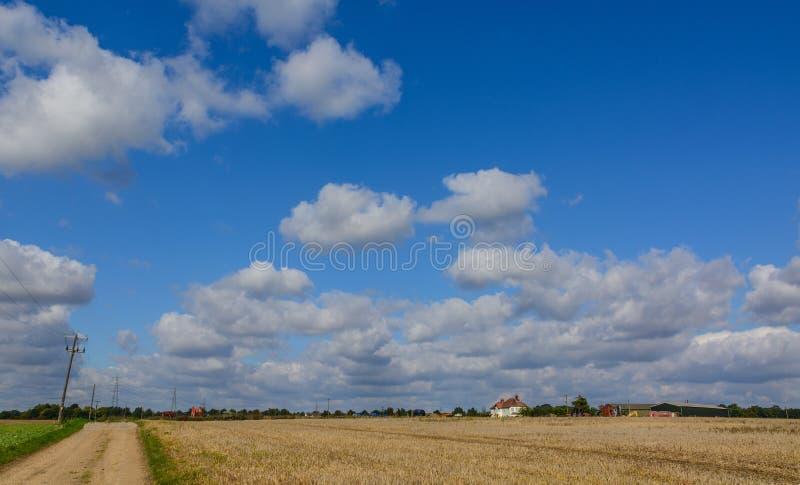 Sommarbygd arkivbilder
