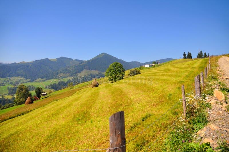 Sommardag i berglandskapet blå sky Carpathian Ukraina, Europa royaltyfri bild