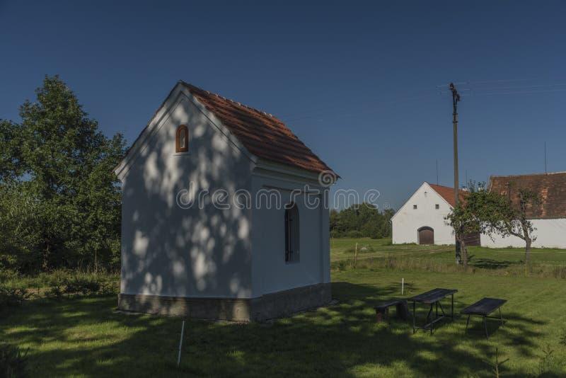 Sommardag nära södra Bohemia damm royaltyfri foto