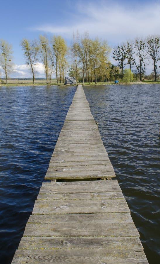Sommardag på sjön arkivbild