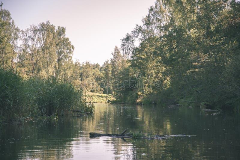sommardag på vatten i den lugna floden inneslutad i skogar med sandstenklippor och torrt trä - retro filmblick för tappning royaltyfria bilder