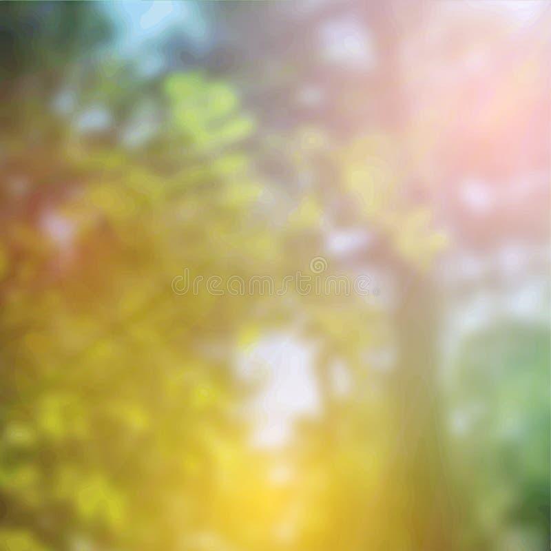 Sommardesign, skogträd, grön wood solljusbakgrund för natur vektor arkivbild