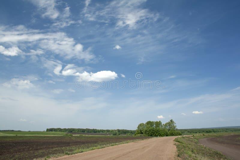 SOMMAREN landskap royaltyfri fotografi