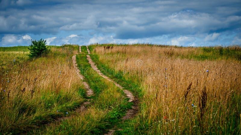 SOMMAREN landskap lantlig fältgrusväg under en molnig himmel arkivfoto