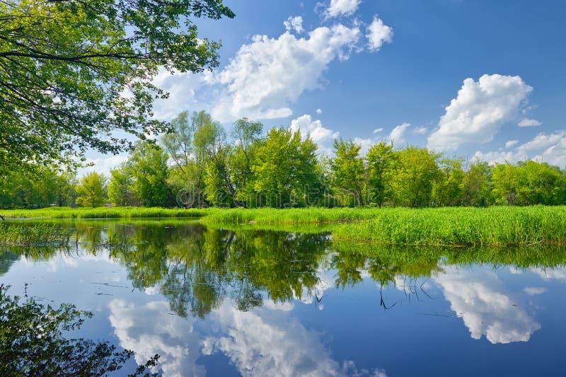 Sommaren landskap med floden och moln på blåttskyen royaltyfri fotografi