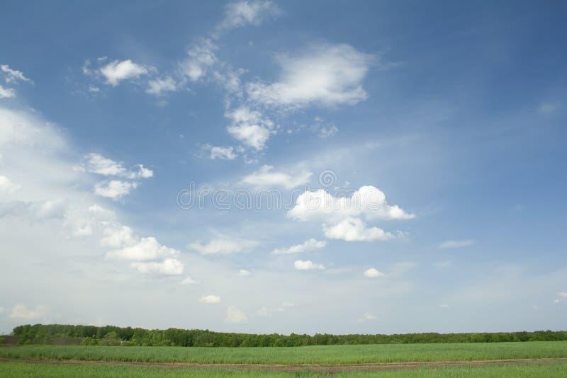 SOMMAREN landskap Moln royaltyfria bilder