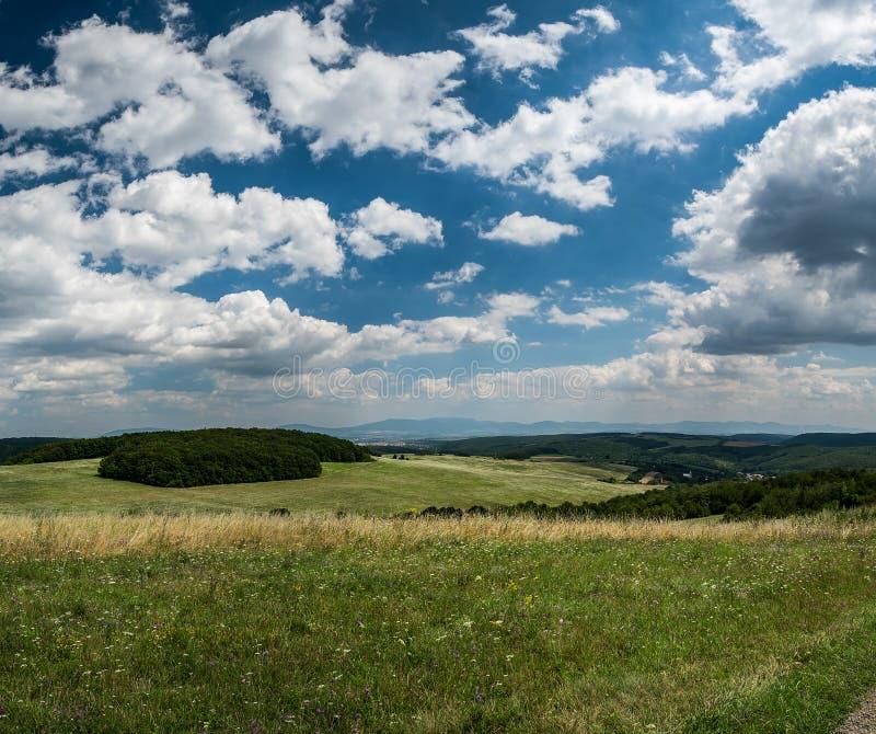 Sommarfält med drömlika moln och blå himmel royaltyfri bild