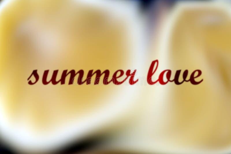 Sommarförälskelse med en färgstänk av någon lemonad arkivbild