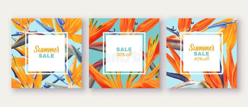 Sommarförsäljningsbaner med tropiska blommor - Strelitzia, på bakgrund med ljusa färger stock illustrationer