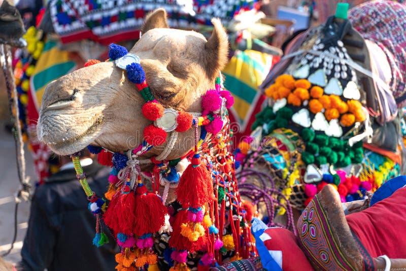 Sommarfestivalen i Jaisalmer i Indien arkivbilder