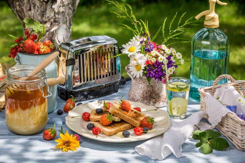 Sommarfrukost i trädgården med fruktrostat bröd med honung royaltyfria foton