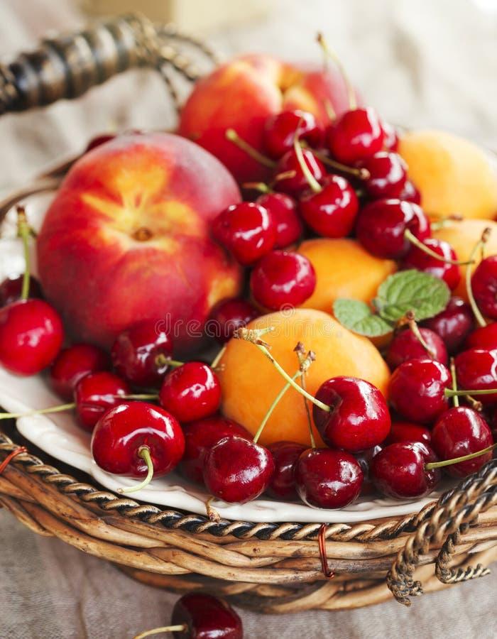 Sommarfrukter och bär royaltyfri fotografi