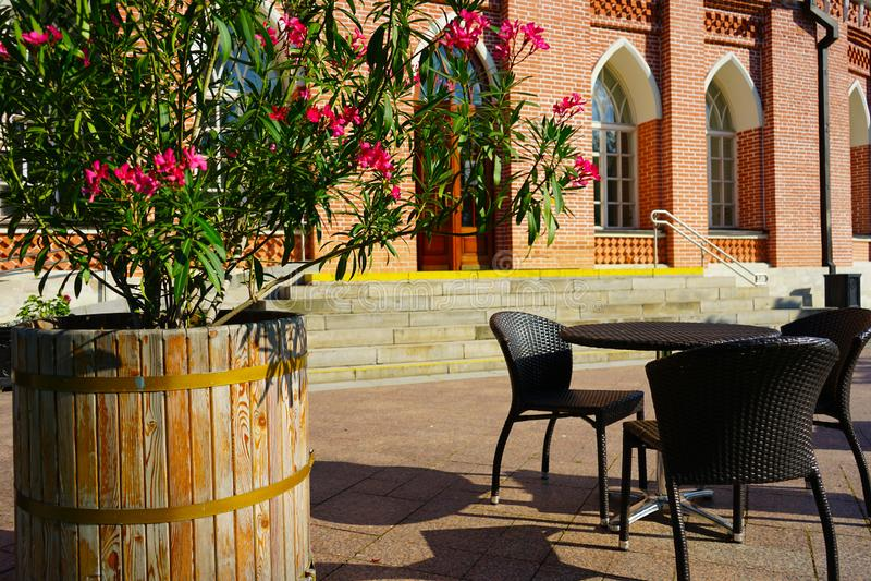Sommargatakafé med blommor på bakgrunden av historiska byggnaden arkivfoto
