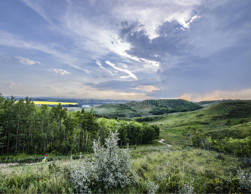 Sommarhimmel över Alberta Foothills royaltyfri foto