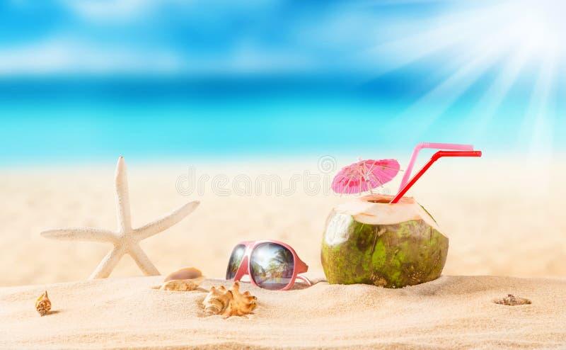Sommarkokosnötdrink på stranden fotografering för bildbyråer