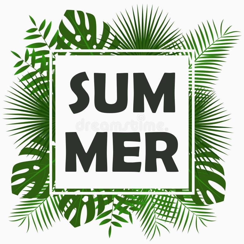 Sommarkortdesign med - tropiska palmblad, djungelbladet, exotiska växter och gränsramen Diagram för affischen, baner vektor stock illustrationer