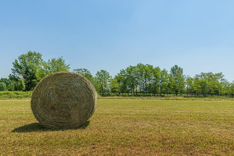 Sommarlandskap av en äng med en bal av hö arkivfoto