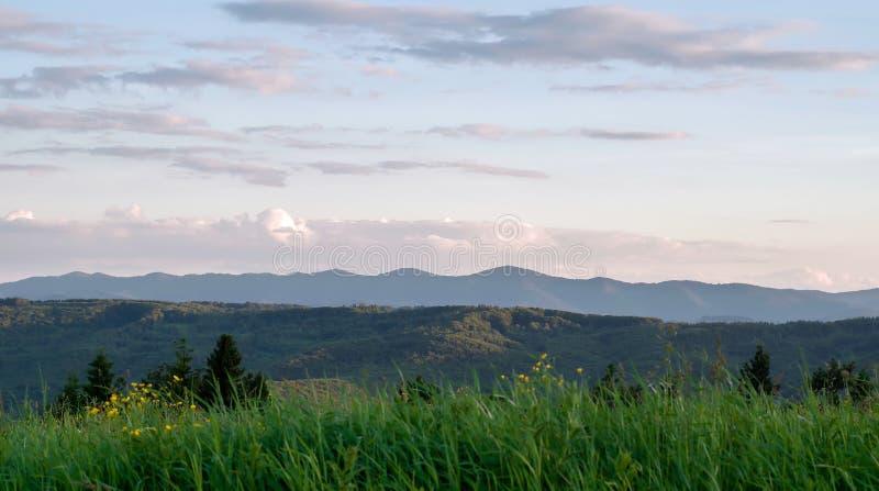 Sommarlandskap för Carpathian berg med blå himmel och moln område moscow en panorama- sikt arkivfoto