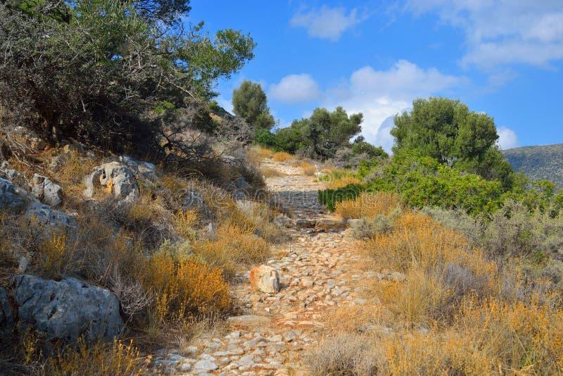 Sommarlandskap i Kreta royaltyfria bilder