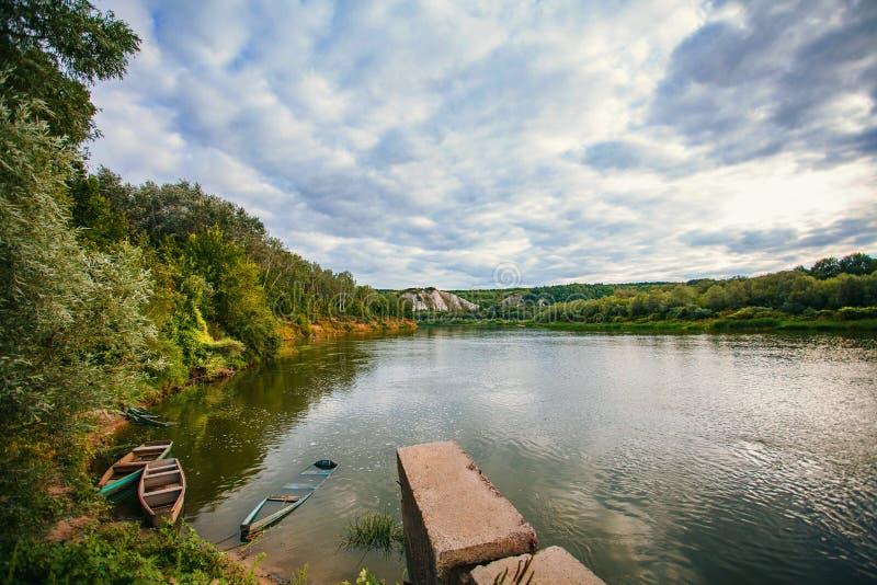 Sommarlandskap i skogar Panorama för sommarskog royaltyfria foton