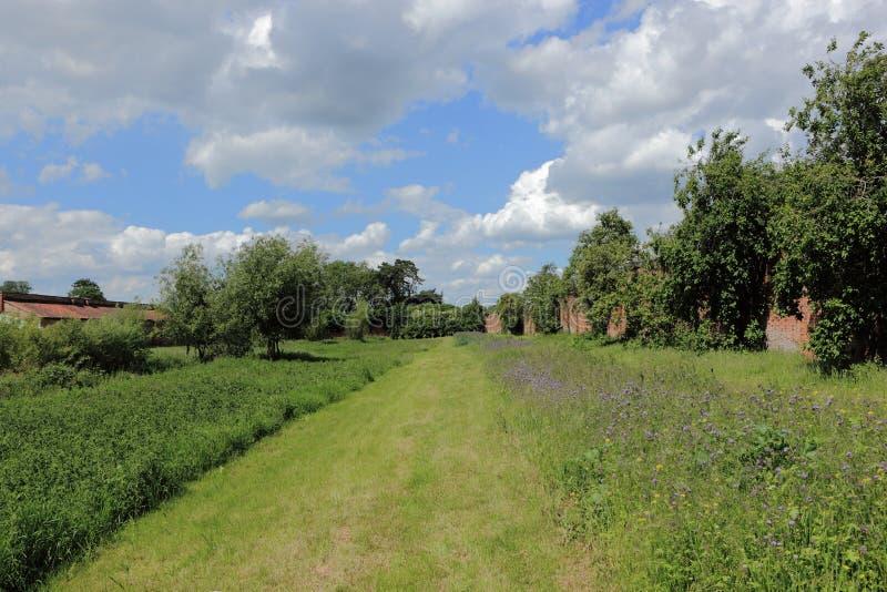Sommarlandskap med blomningväxter i en naturvårdsområde av en walled trädgård fotografering för bildbyråer
