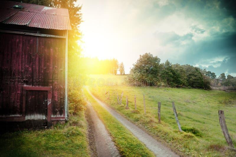 Sommarlandskap med den gamla ladugård- och landsvägen royaltyfri fotografi