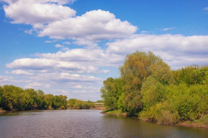 Sommarlandskap med den lilla floden som flödar mellan skogsbevuxna banker Ryssland Ryazan, Trubezh flod arkivfoton