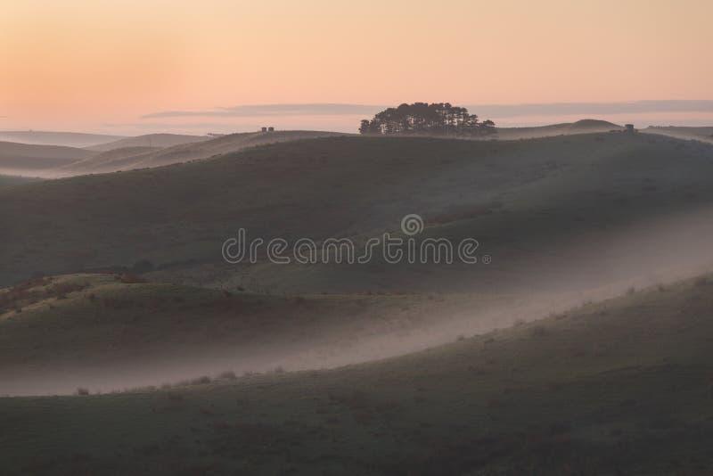Sommarlandskap med dimma i dalen ovanför floden, dimmig morgon Landskap av fält med gräs i morgonen Tomt beta arkivbild