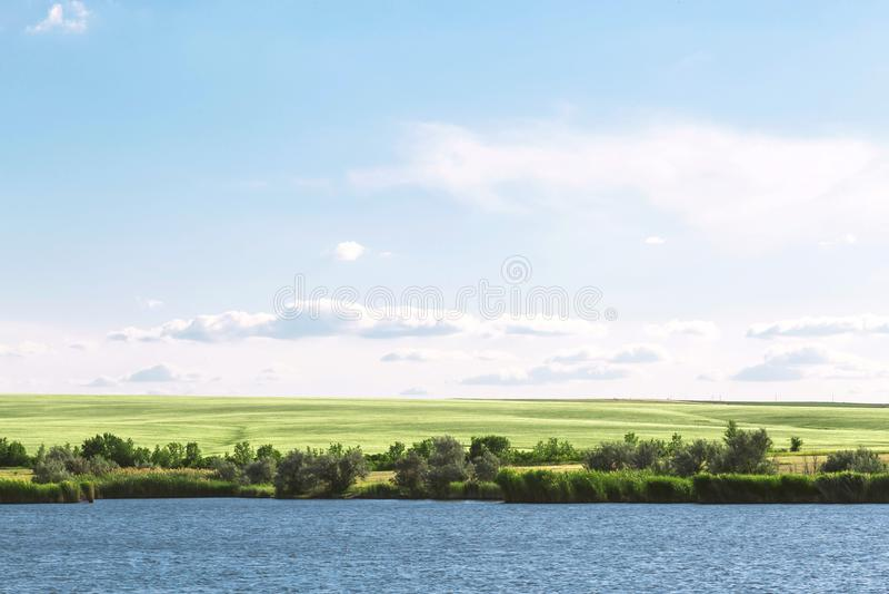 Sommarlandskap med en härlig blå sjö och gröna fält mot en blå himmel Fotvandra och att fiska på dammet Resa till floden royaltyfri foto