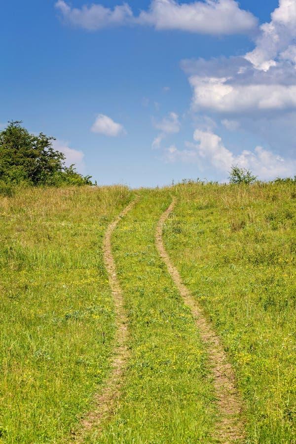 Sommarlandskap med gult gräs och vägen arkivfoto