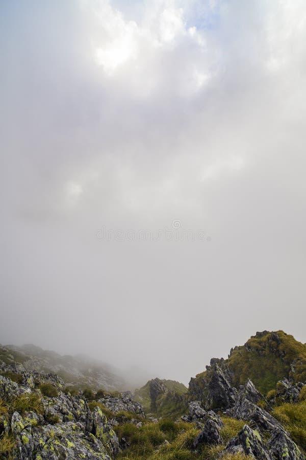 Sommarlandskap med höga berg i en sommardag fotografering för bildbyråer