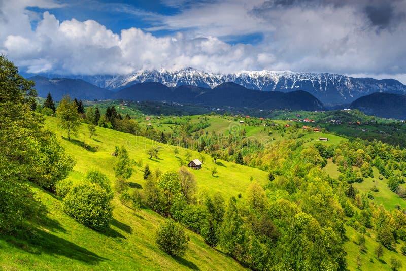 Sommarlandskap med snöig berg nära Brasov, Transylvania, Rumänien, Europa arkivbilder