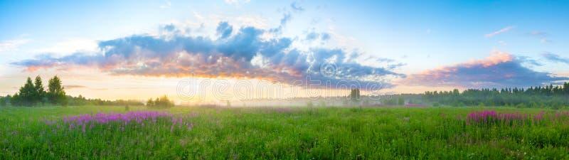 Sommarlandskap med soluppgång royaltyfria foton