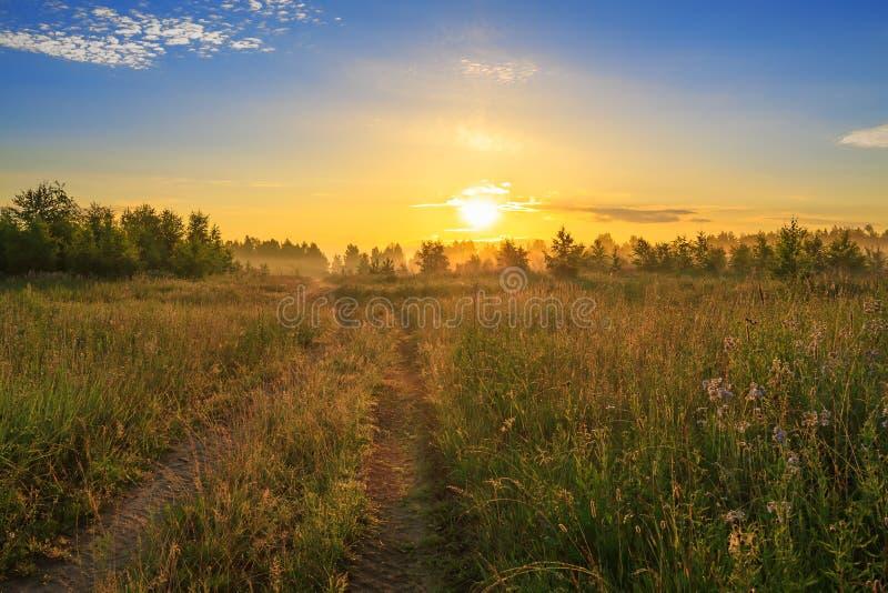 Sommarlandskap med soluppgång, dimma och vägen arkivbild