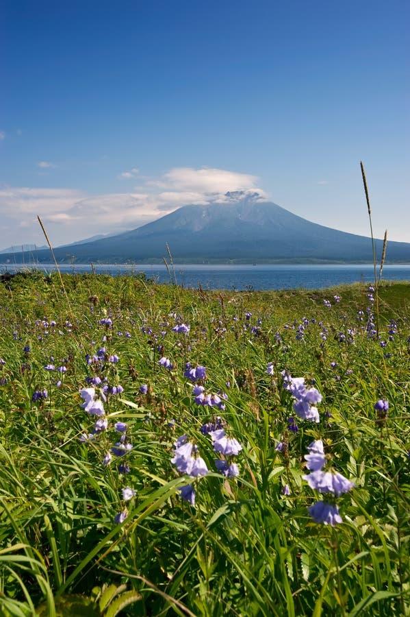 Sommarlandskap mot bakgrunden av vulkan Stokap royaltyfri foto