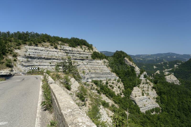 Sommarlandskap nära La Verna, Toscana arkivbild