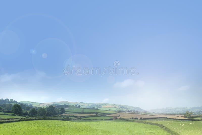Sommarlandskapbakgrund royaltyfri foto