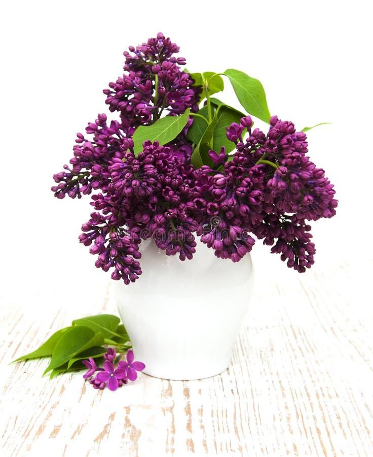 Sommarlilan blommar i vas royaltyfri fotografi