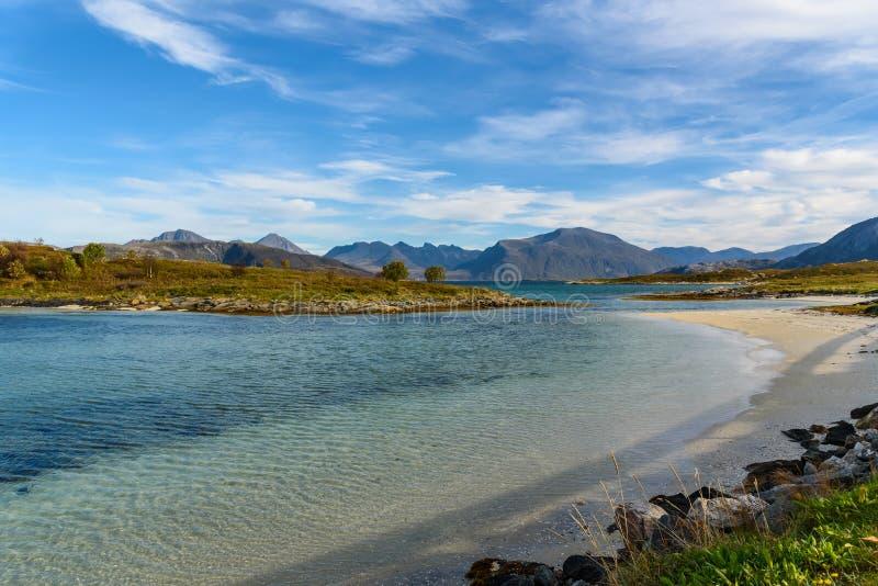 Sommaroy wyspa, Tromso, Norwegia, Scandinavia, selekcyjna ostrość zdjęcie royalty free