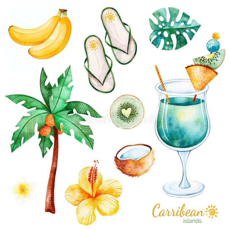 Sommarsamling med exotiska frukter, plamträd, hibiskusblomma, tropiskt blad, plumeriablomma, cocktai royaltyfri illustrationer