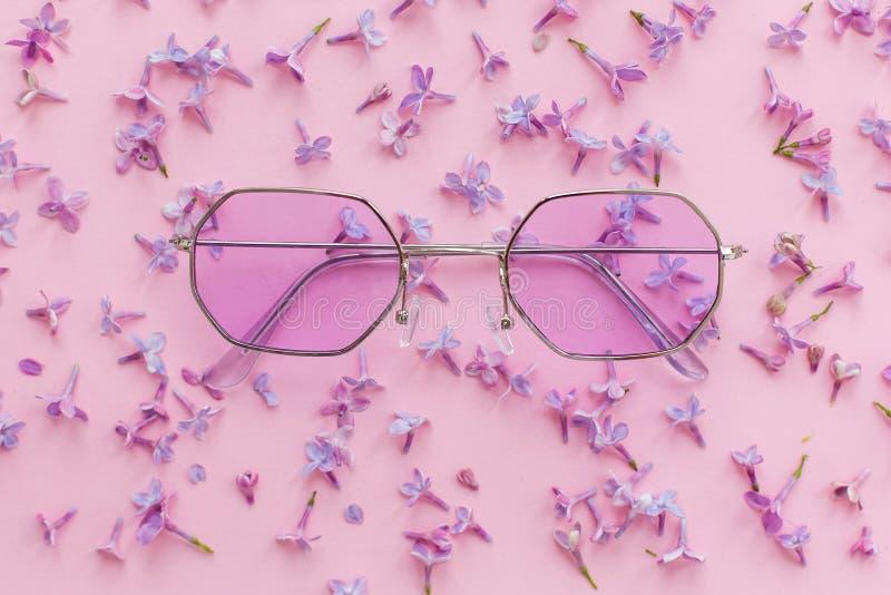 Sommarsemester och festivalbegrepp stilfull purpurfärgad bohosungla royaltyfri fotografi