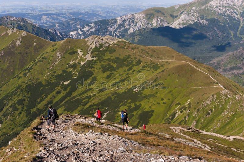 Sommarsikt från den fotvandra slingan i de västra Tatra bergen arkivbilder