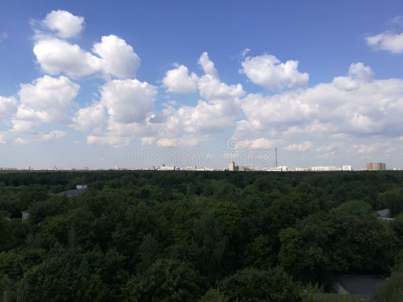 Sommarsikten av parkerar Sokolniki och Moskva arkivfoto