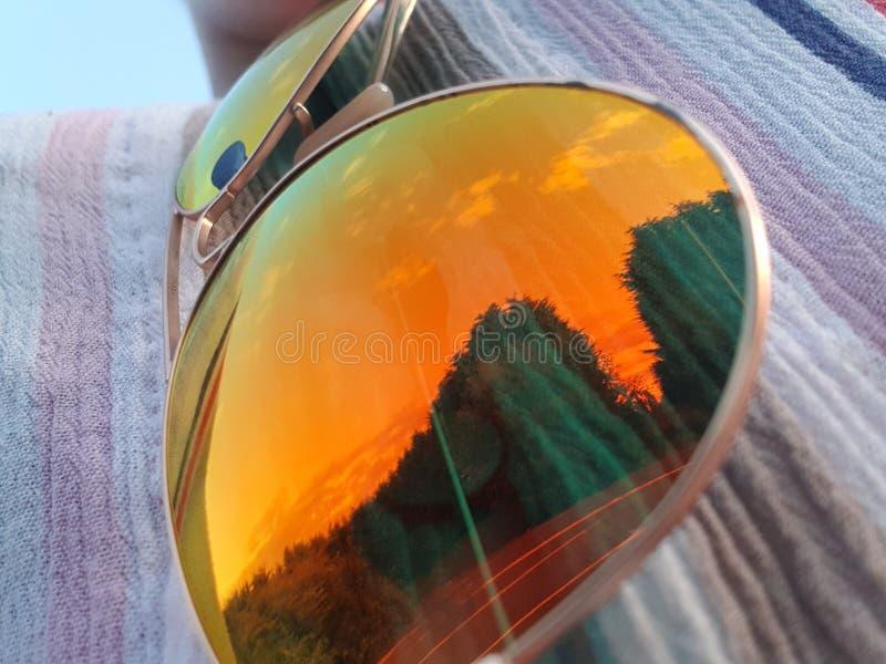 Sommarsolglasögonreflexion och träd royaltyfri fotografi