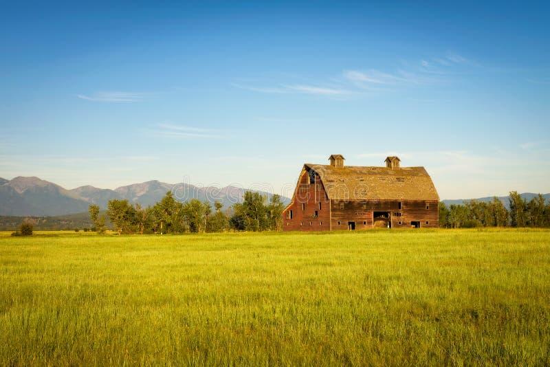 Sommarsolnedgång med en gammal ladugård i lantliga Montana fotografering för bildbyråer