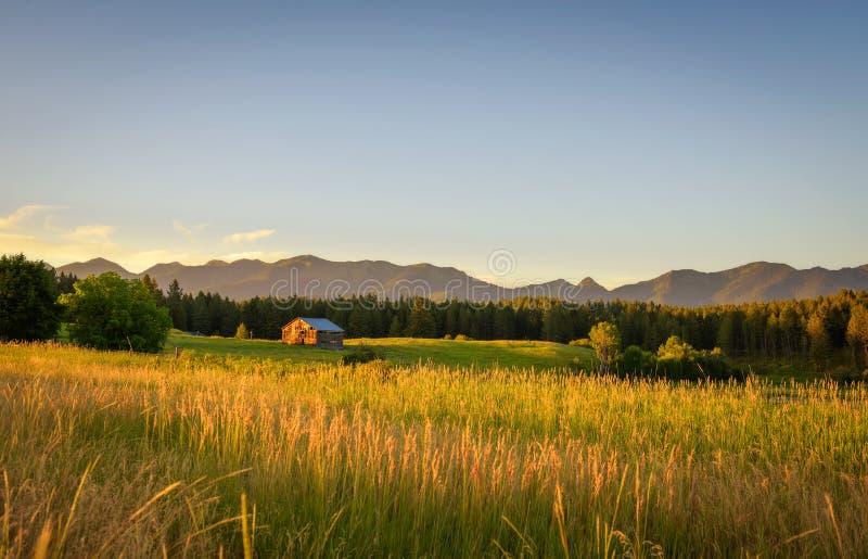 Sommarsolnedgång med en gammal ladugård i lantliga Montana royaltyfri fotografi